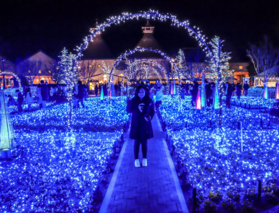 Nagoya Akari Night and Hisaya-Odori Garden Flarie